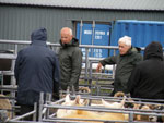 Sheep judge, Neil MacPherson, Benbecula (left)
