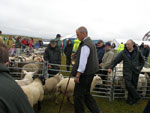 Sheep judge Richard MacLennan, Harris