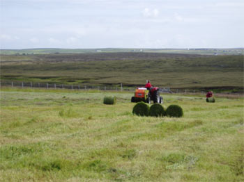 Rolling the bales into batches for wrapping is tiring, but it still beats a day on the old hand rake!